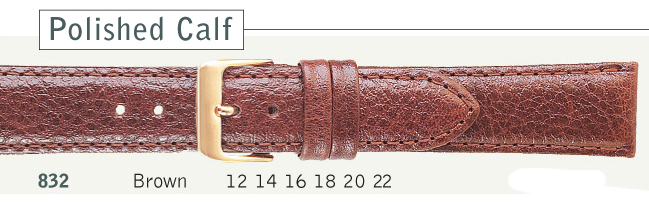 WatchStrap 832
